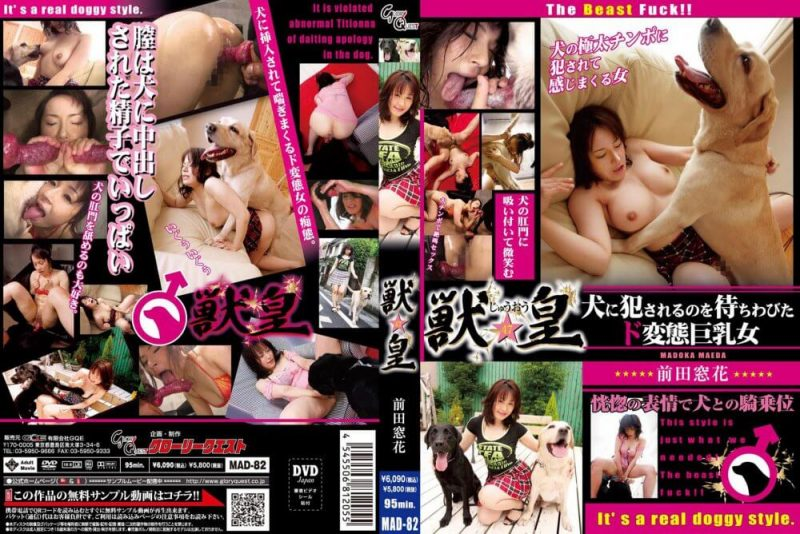 japanese dog sex