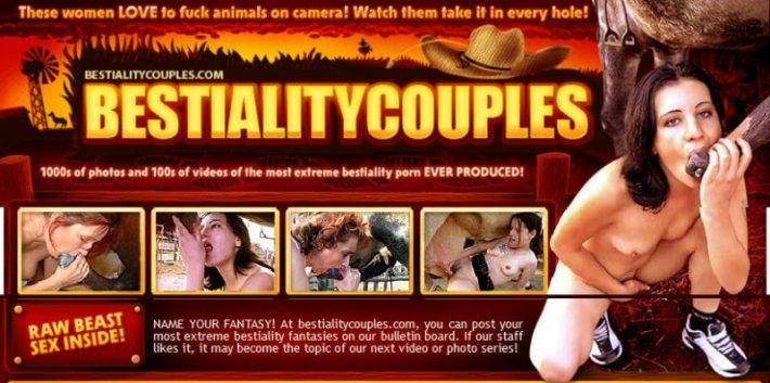 BestialityCouples SiteRip – 11 Videos